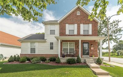 St Louis Single Family Home For Sale: 3152 Rutger Street