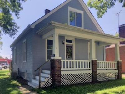 Belleville Single Family Home For Sale: 11 North Michigan Avenue
