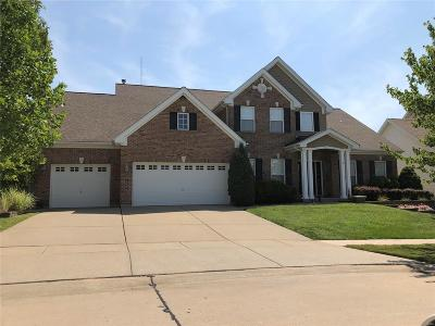 Wentzville Single Family Home For Sale: 206 Hawthorn Meadows