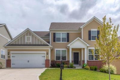 Town and Country Single Family Home For Sale: 743 Savannah Crossing Way