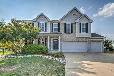 Lake St Louis Single Family Home For Sale: 25 Canfield Court