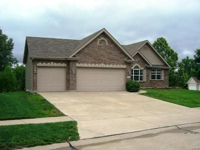 Wentzville Single Family Home For Sale: 4201 Broken Rock Drive