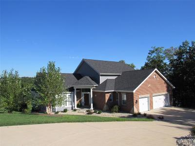 St Louis Single Family Home For Sale: 9854 Eagle Hill