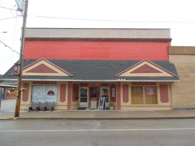 Commercial For Sale: 116 North Main Street