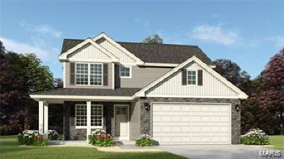 Shiloh Single Family Home For Sale: 131 Shiloh Ridge *birkdale Model*
