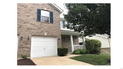 Single Family Home For Sale: 57 Jost Villa Drive
