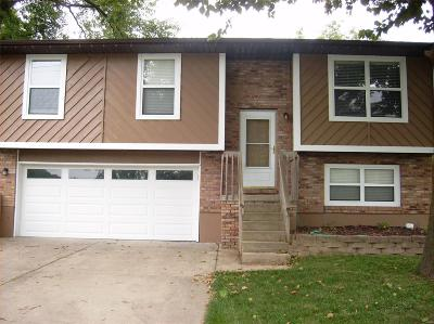 Glen Carbon Single Family Home For Sale: 116 Birger Avenue