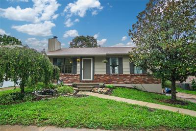 Single Family Home For Sale: 811 Matthews Drive