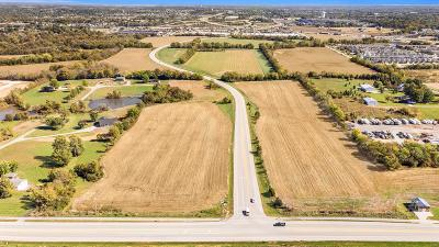 Lake St Louis Commercial For Sale: 4.42 Acres - Hawk Ridge Trail