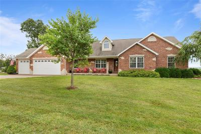 Lincoln County, Warren County Single Family Home For Sale: 976 Brownsmill Road