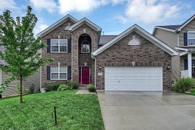 Ballwin Single Family Home For Sale: 1013 Meramec Grove Drive