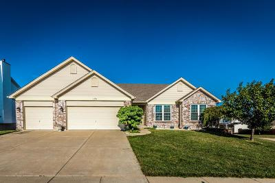 Wentzville Single Family Home For Sale: 121 Bear Claw Drive