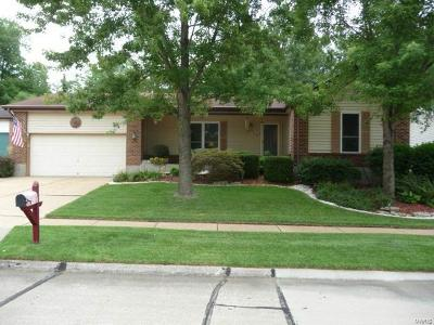 Single Family Home For Sale: 6012 Bissonnet Court