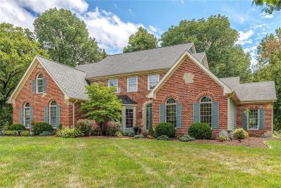 Chesterfield Single Family Home For Sale: 16182 Wilson Manor Drive