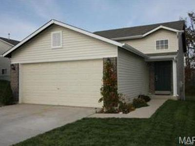 Wentzville Single Family Home For Sale: 11 Ramblewood