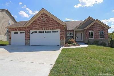 Festus Single Family Home For Sale: 10578 Victoria Falls