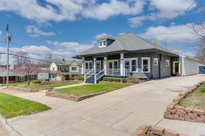 Warrenton Commercial For Sale: 207 West Booneslick