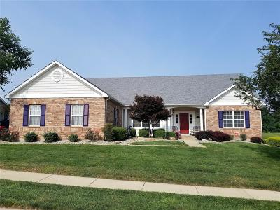 Fairview Heights Single Family Home For Sale: 7401 Timberwolf Trail