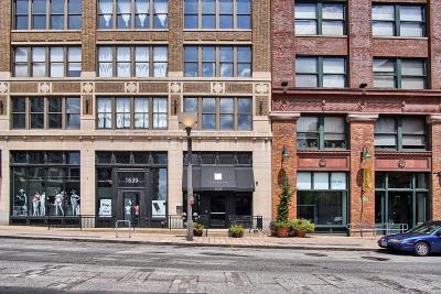 St Louis City County Single Family Home For Sale: 1635 Washington Avenue #902