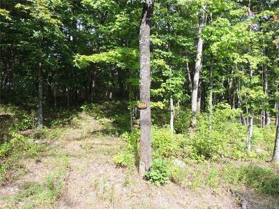 Lincoln County, St Charles County, St Louis City County, St Louis County, Warren County Residential Lots & Land For Sale: 2544 Alpine Woods Drive