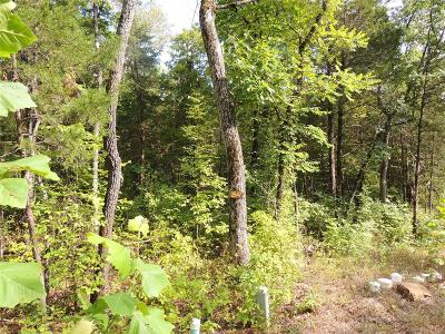 Lincoln County, St Charles County, St Louis City County, St Louis County, Warren County Residential Lots & Land For Sale: 2547 Alpine Woods Drive