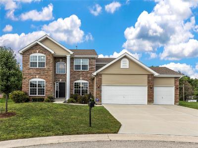 Caseyville Single Family Home For Sale: 1032 Crooked Stick Drive