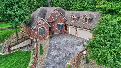 Belleville Single Family Home For Sale: 1656 Golf Course Drive