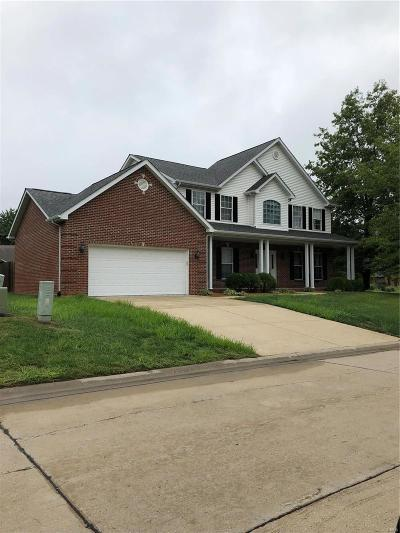 Swansea Single Family Home For Sale: 1825 Creekside Drive