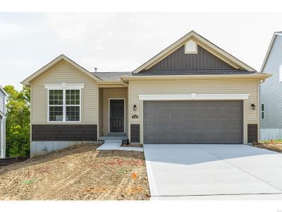Single Family Home For Sale: 1022 Konert Lake Drive