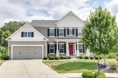 Wentzville Single Family Home For Sale: 75 Winners Circle