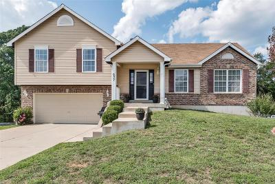 Wentzville Single Family Home For Sale: 637 Stone Bend Trail