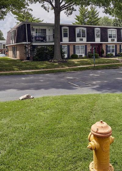 Single Family Home For Sale: 800 Dumont #E