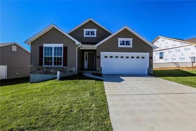 Franklin County Single Family Home For Sale: 1721 Meade Ct