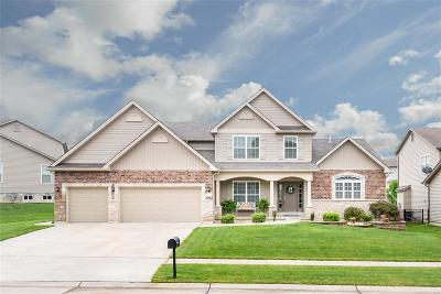 Wentzville Single Family Home For Sale: 45 Verdant View Manor Court
