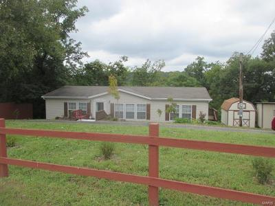 House Springs Single Family Home For Sale: 4543 Springview