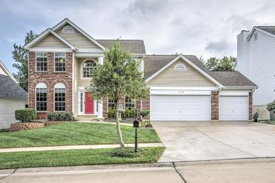 Single Family Home For Sale: 314 Jefferson Circle Drive