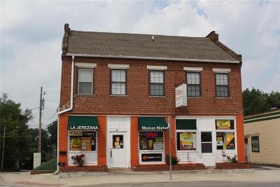 Commercial For Sale: 401 North Illinois