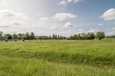 Jefferson County, Madison County, St Francois County Commercial For Sale: 1031 Saint Pius Drive