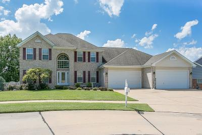 Single Family Home For Sale: 9756 Gerald Drive