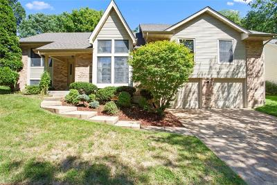 Chesterfield Single Family Home For Sale: 14361 White Birch Valley Lane