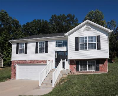 Single Family Home For Sale: 1516 Dorie Court