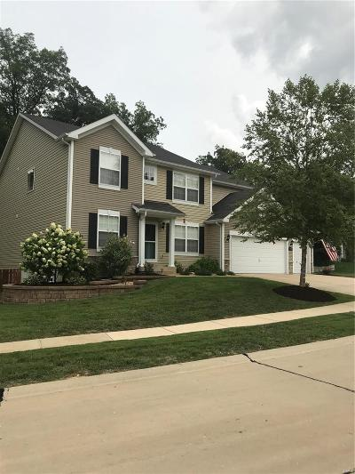 High Ridge Single Family Home For Sale: 1409 Heritage Valley Drive
