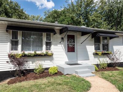 Single Family Home For Sale: 209 Madison Avenue