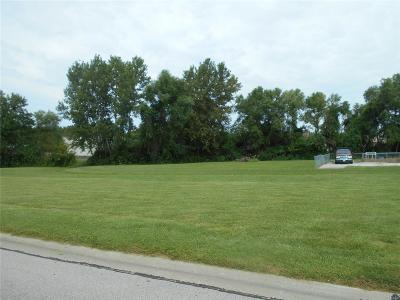 Shiloh Commercial For Sale: 2221 Country Lane