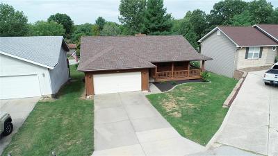 Lake St Louis Single Family Home For Sale: 608 Glen Cove Terr