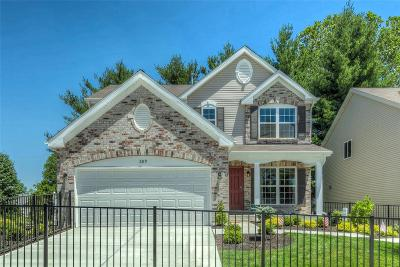 Single Family Home For Sale: 2 Bblt-Inness Iii-Vista Conn