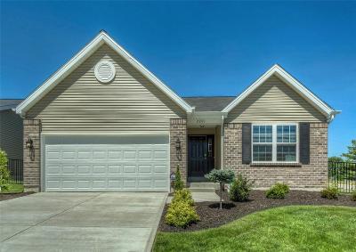 Single Family Home For Sale: 2 Bblt-Prinz Iii-Vista Conn