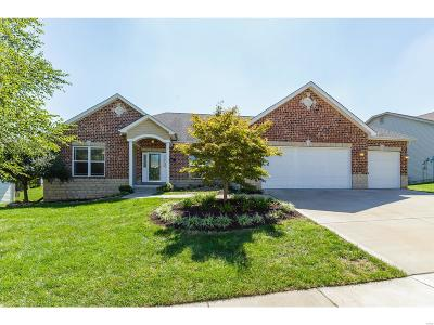 Wentzville Single Family Home For Sale: 804 Kevin Drive