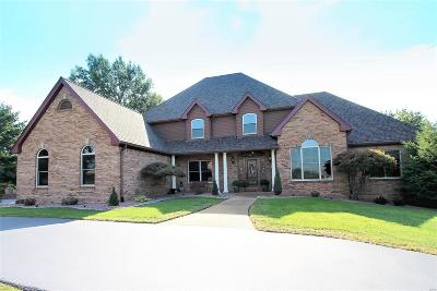 St Louis Single Family Home For Sale: 13536 Pine Wood Trail