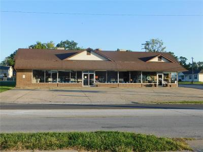 Troy Commercial For Sale: 581 East Cherry Street